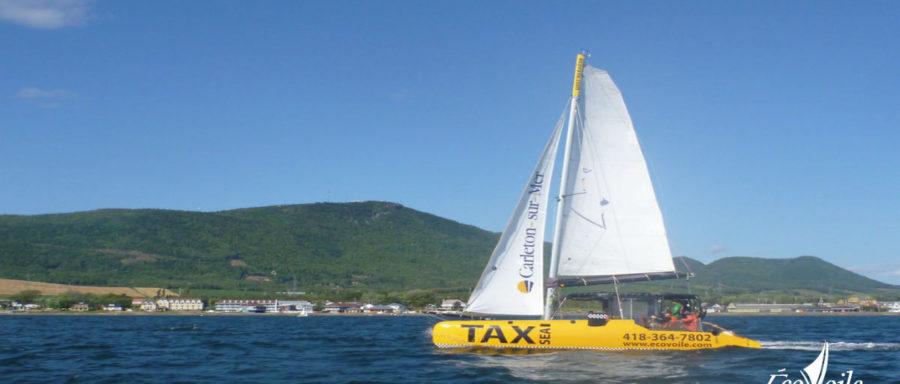 TaxSea-petit-1200x630 logo